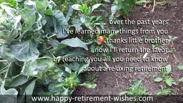 retirement sayings step brother